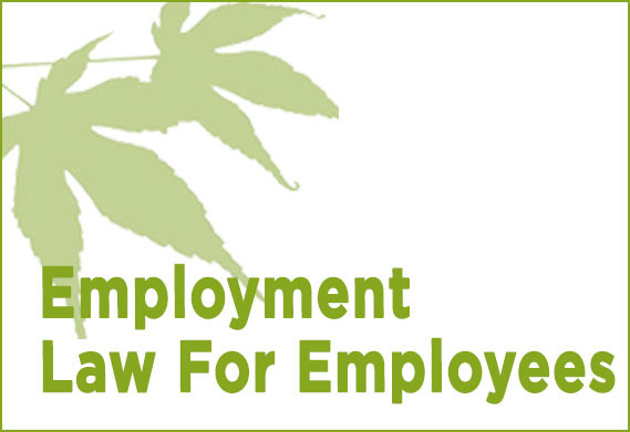 acer-solicitors-kenilworth-employment-law-for-employees